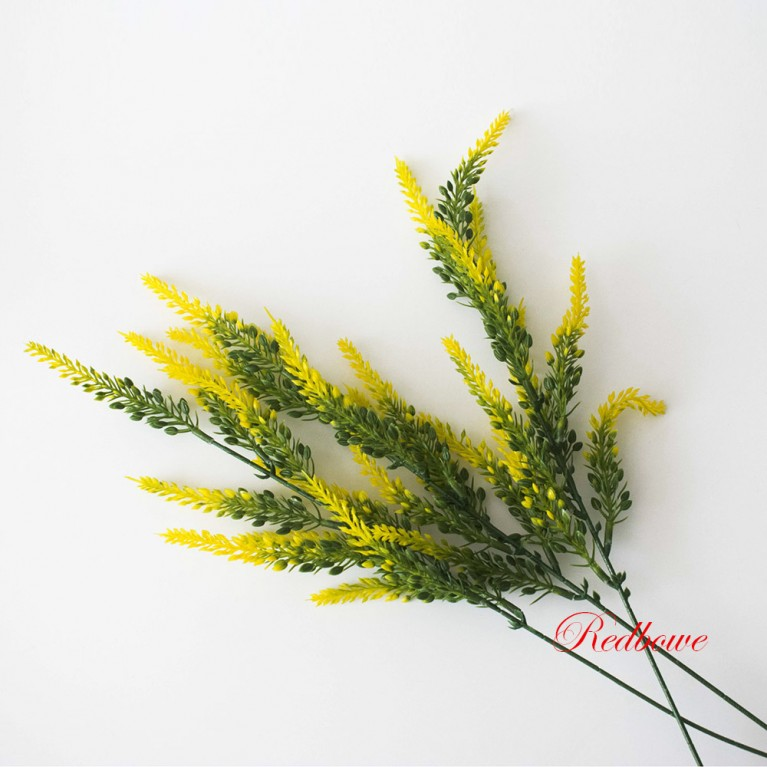 Вереск желтый П15