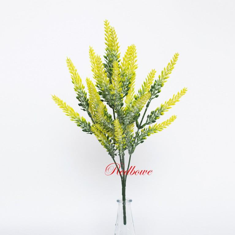 Вереск припыленный желтый П261