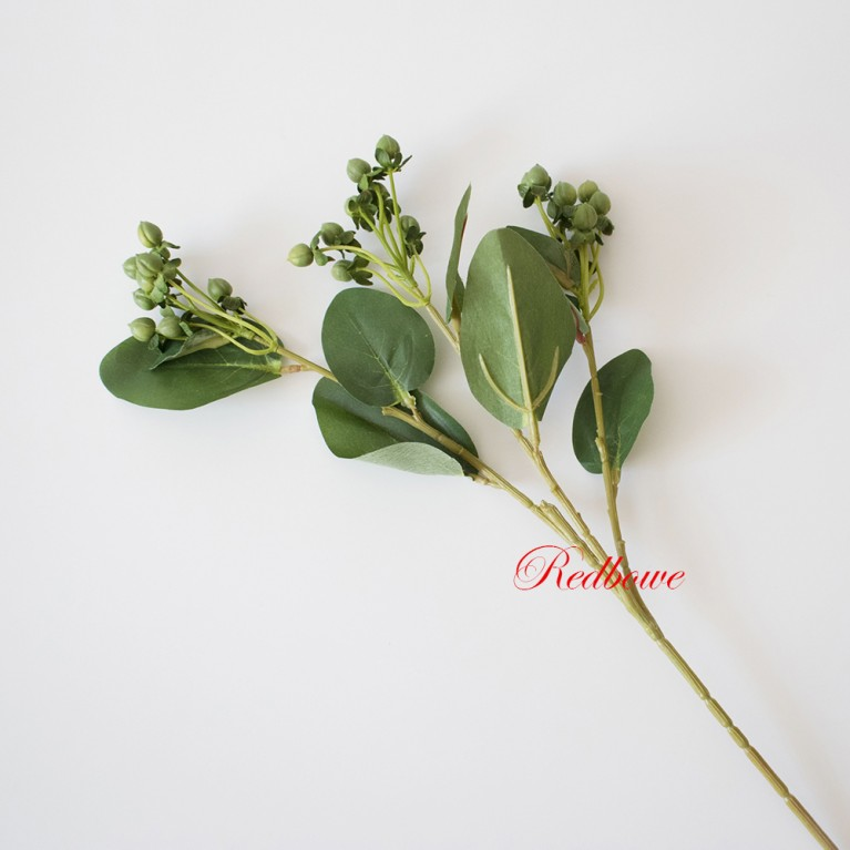 Гиперикум зеленый Б345
