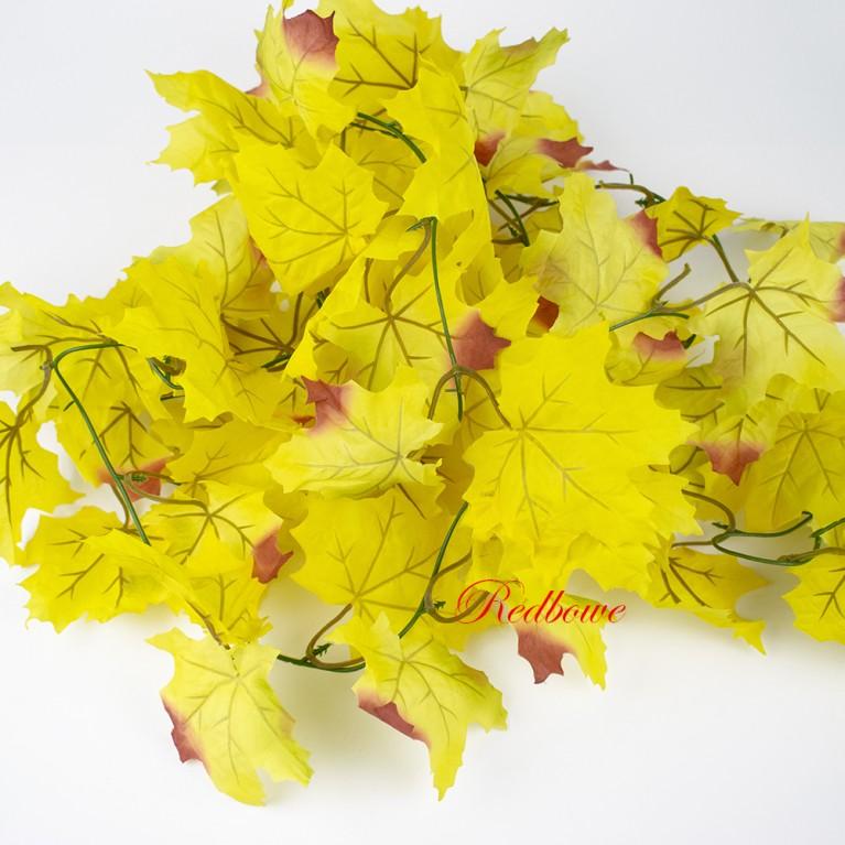 Лиана осеннего клена желтая Л55
