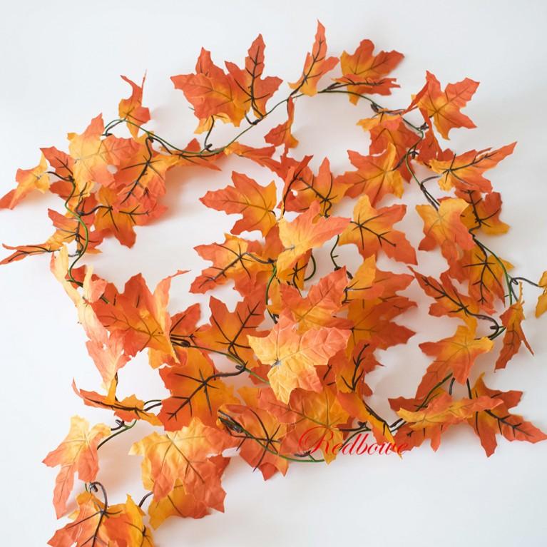 Лиана осеннего клена желто-оранжевый канадский клен Л55